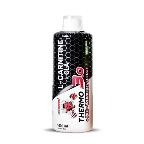 Protouch BigBang Thermo 3.0 L-Carnitine+CLA 1000 Ml | MaçoLifeStyle